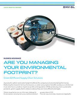 Green & Efficient Supply Chain Solutions - by DNV GL